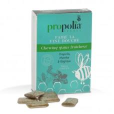 Propolis-Mint Gum
