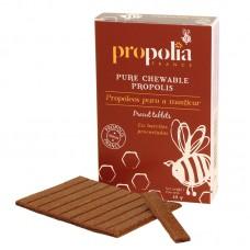 Pure Propolis to chew