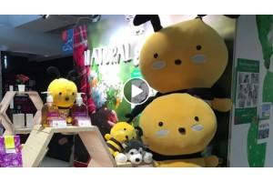 三月份MoMo, Andy 和一眾成員會到荔枝角 D2 place POP UP 幫手招呼客人
